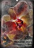 Shabby - Orchidee, Interpretation auf alten Fotoplatten (Wandkalender 2018 DIN A3 hoch): Shabby-Orchidee - frei interpretiert mit alten Fotoplatten, ... [Kalender] [Apr 04, 2017] Renken, Erwin