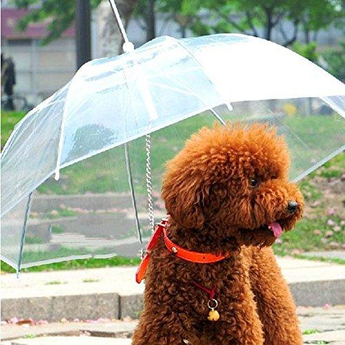 Gowind6 - Perro para Mascota, Transparente, Cachorro, seco, cómodo, para Nieve, Uso