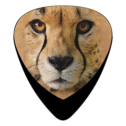 Big Face Cheetah Guitar Picks Celluloid Print Mens Complete Assorted 12 Pack