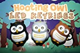 Kikkerland KRL26TC Owl LED Keychain with Sound by Kikkerland