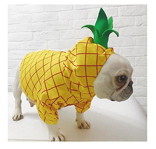 ver Mode Haustier Ananas Outfit mit Hut Katze GOG Kleidung S (Ananas Hut Kostüm)