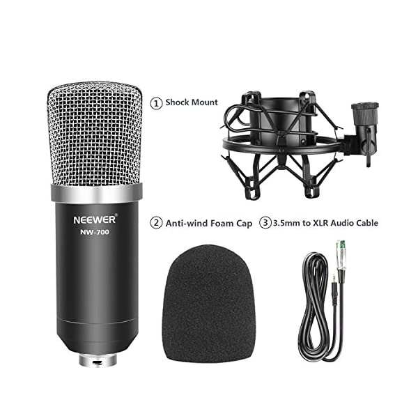 Neewer® nw-700Set con 1 nw-700+ 1 Microfono Shock Mount + 1 Tappo di Schiuma a Sfera Anti-vento + 1 Cavo Audio, Nero