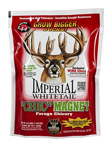 Whitetail Institute Imperial Chic Magnet Food Plot Seed, 3 lb by Whitetail Institute -