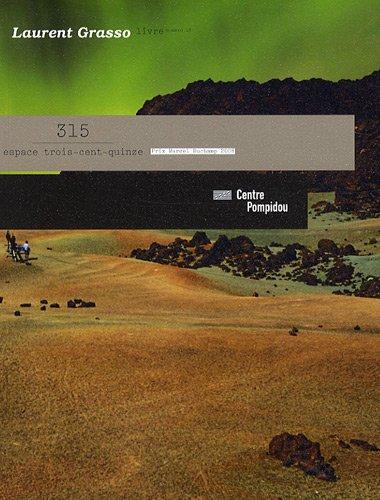 Espace trois-cent-quinze, N° 18 : Laurent Grasso : The Horn Perspective par Jean-Pierre Bordaz
