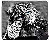 Gaming Mouse Pad, Leopard Wild Leopard Rutschfestes Mousepad auf Gummibasis