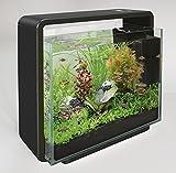 SF LED Aquariumset Home 40 schwarz