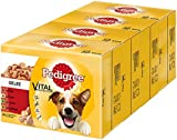 Pedigree Hundefutter Nassfutter Adult in Gelee, 48 Portionsbeutel (4 x 12 x 100g)