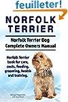 Norfolk Terrier. Norfolk Terrier Dog...
