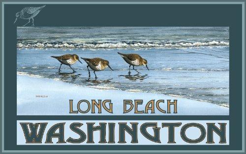 Northwest Art Mall Long Beach Washington Birds at Beach Poster Druck Gerahmt von Dave bartholet, 27,9cm von 43cm