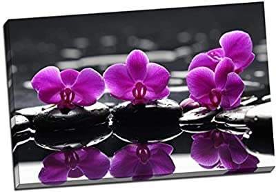 Floral Purple Roses On Black Stones Canvas Print Picture Wall Art Large 30x20 Inches (76.2cm x 50.8cm) - inexpensive UK sofabed shop.