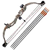AW Junior Compound Bow Kit (34inch) with 4 Pieces Arrow Set Youth Archery