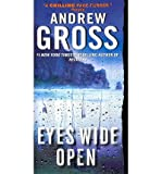 [(Eyes Wide Open)] [Author: Andrew Gross] published on (May, 2012)