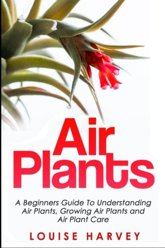 air-plants-a-beginners-guide-to-understanding-air-plants-growing-air-plants-and-air-plant-care-bookl