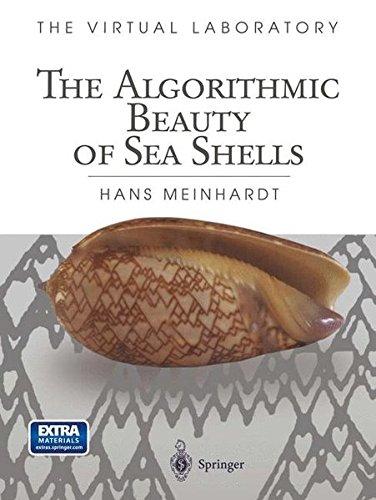 The Algorithmic Beauty of Sea Shells (The Virtual Laboratory) (Visualisierung Von Daten In R)