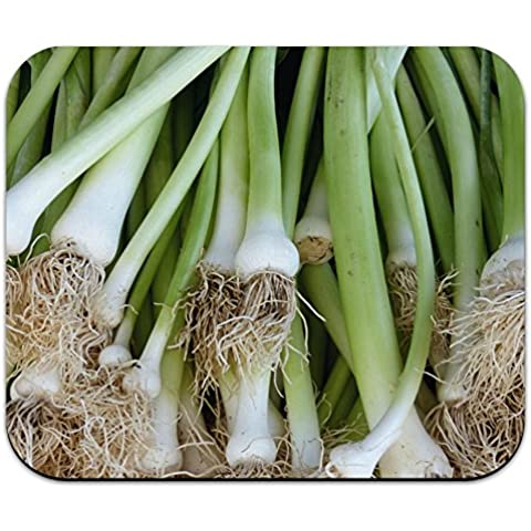 Green Onions-porri Scallions-Mouse
