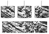 Monocrome, Blumenstrauß auf altem Holztisch inkl. Lampenfassung E27, Lampe mit Motivdruck, tolle Deckenlampe, Hängelampe, Pendelleuchte - Durchmesser 30cm - Dekoration mit Licht ideal für Wohnzimmer, Kinderzimmer, Schlafzimmer