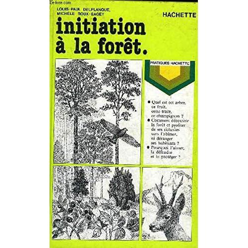 Initiation à la forêt.