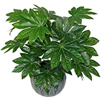 Leaf 60 cm Artificielle Japonaise Aralia Plante À Feuilles Persistantes Houseplant - en Plastique Noir Pot