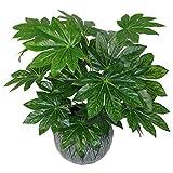 Leaf Foglia 60cm Artificiale Giapponese Aralia pianta sempreverde Vaso per Piante da Appartamento in plastica Nera