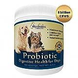 Adult Probiotics Review and Comparison
