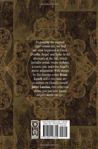 Angel, Vol. 6: Last Angel in Hell (Angel (Numbered Hardcover))
