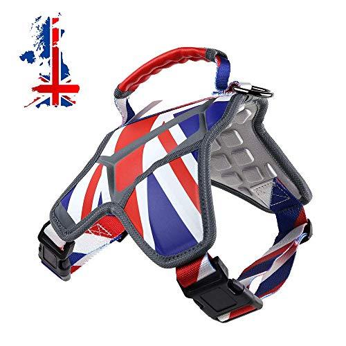 Weetall Arnés para Perros, arnés para Perros pequeño, Mediano y no Ajustable, El Tema de la Bandera del Reino Unido Chaleco para Perros con Correas Reflectantes para Razas pequeñas (L, Inglaterra)