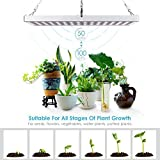 Amzdeal Pflanzenlampe, LED Pflanzen Lampe, Wachstumslampe Blumenlampe, Pflanzenlicht Pflanzenbeleuchtung Rot Blau, 35W 225 LEDs