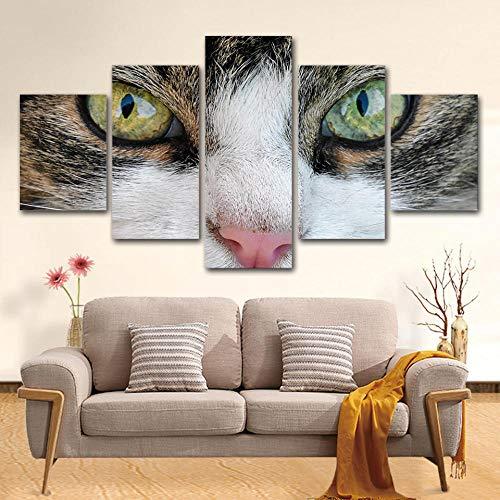 Stück leinwand malerei Niedlichen Tier Kitty Cat Eye kunst wand Dekoration Für Wohnzimmer HD Drucke Poster-16x24/32/40inch,With frame ()