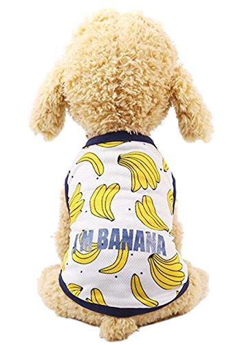 OUUD Crasy Shop Damen-T-Shirt, für den Sommer, Hawaii-Hemd, für Jungen und Mädchen für Hunde und Katzen