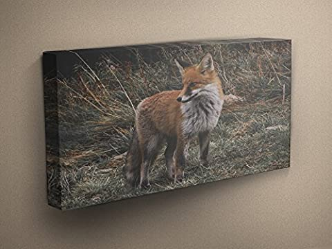 Brown and White Grassland Fox Stretched & Mounted Canvas Art Print - Perfect Gift - Various Sizes
