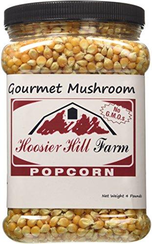 hoosier-hill-farm-popcorn-american-gourmet-mushroom-xxl-4-pounds-jar