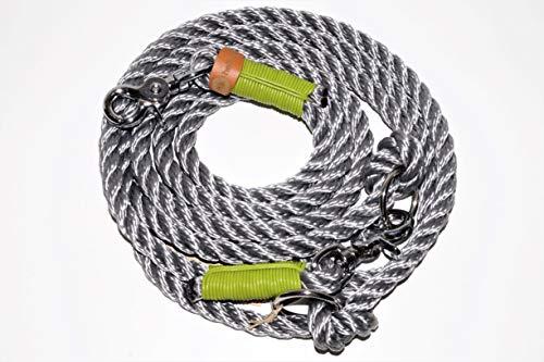 Apple Green Leder (Hundeleine Tau 250cm Shiny Silber/Leder Apple Green/Chrom)
