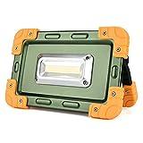 Tianranrt super luminoso USB pieghevole 30W COB LED ricaricabile portatile Luce di inondazione lampada posto riparazione lavoro campeggio pesca caccia Outdoor