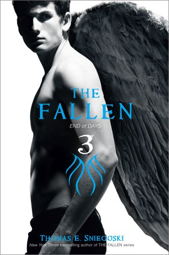 The Fallen 3: End of Days (English Edition)