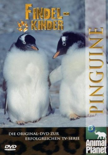 Animal Planet - Findelkinder, Vol. 1: Pinguine