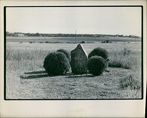 vintage-photo-dune-photographie-dun-paysage-avec-une-pierre-monte-dans-le-centre-entoure-par-les-pla