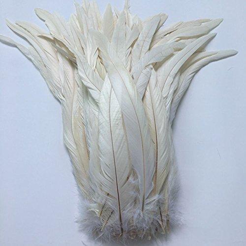 Sowder schwarze Schwanzfedern vom Hahn, ca. 27–35cm Länge, 50Stück gebrochenes ()
