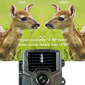 FLAGPOWER Wildlife Camera 16MP 1080P HD Game Trail Hunting Camera Fast Trigger IR LED Night Vision Camera 65ft Motion Activation IP66 Waterproof with 32GB SD Card