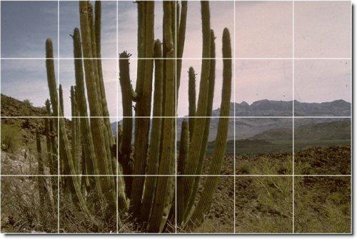 AZULEJOS DE COCINA DESIERTOS FOTO MURAL 18  32X 48CM CON (24) 8X 8AZULEJOS DE CERAMICA