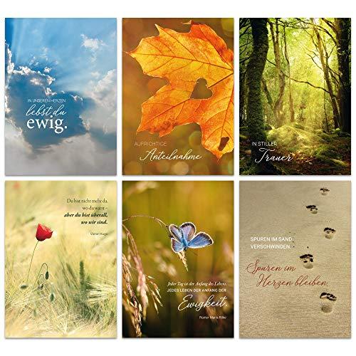 Paperii Trauerkarten 6er Set inklusive Umschläge Beileidskarten Kondolenzkarte – einfühlsame Sprüche