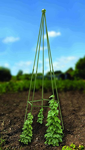 quick-and-easy-20m-wigwam-gro-belisk-plant-support