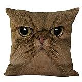 Hometaste Animal dekorativer Überwurf-Kissenbezug Kissen für Schlafcouch Sofa, baumwolle, Cat Face1, 18x18