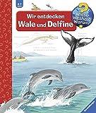 Wir entdecken Wale und Delfine (Wieso? Weshalb? Warum?, Band 41) - Doris Rübel