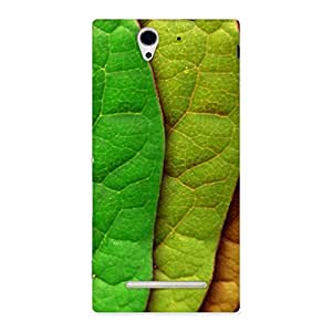 Special Leaf Pattern Multicolor Back Case Cover for Sony Xperia C3