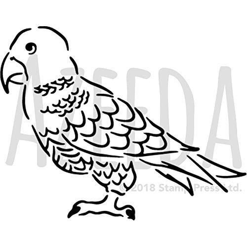 Lll Papagei Vorlage Im Vergleich 03 2019 Top 10