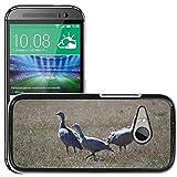 Grand Phone Cases Bild Hart Handy Schwarz Schutz Case Cover Schale Etui // M00141005 Cape Barren Gänse Gänse Tier // HTC One Mini 2 / M8 MINI / (Not Fits M8)