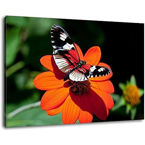 Farfalla sul fiore dimensioni: 120x80 cm pittura coperto su tela, grandi immagini XXL completamente finiti e incorniciate con barella, stampa arte murale con telaio, più conveniente che la pittura o l'immagine, senza manifesti o
