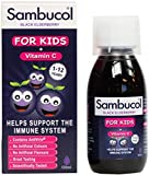 Sambucol Kids (120ml) x 2 Pack Deal Saver by SAMBUCOL Black Elderberry Liqu