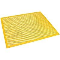 Apiculture National britannique Poly Hive Plastique Queen Boudin–500mm x 500mm (1)