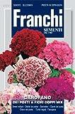 Franchi Samen Bartnelke Sweet William, gefüllte Blüten
